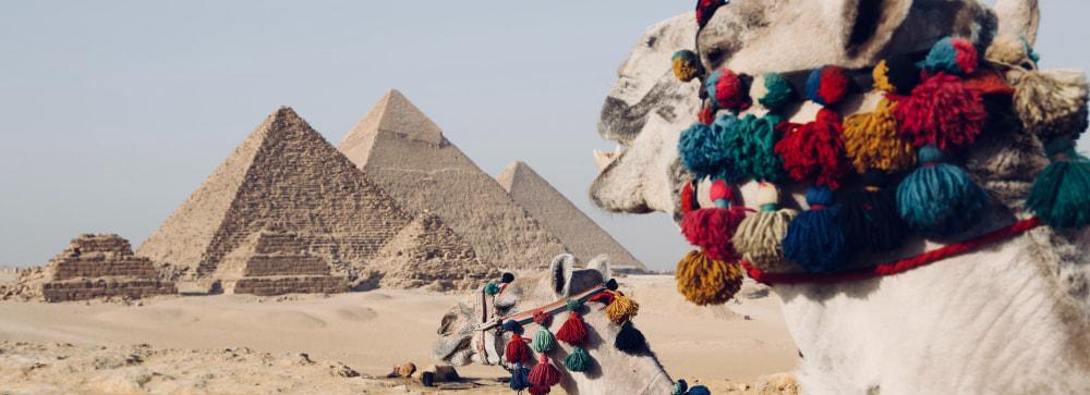 Cairo International Airport Transfers